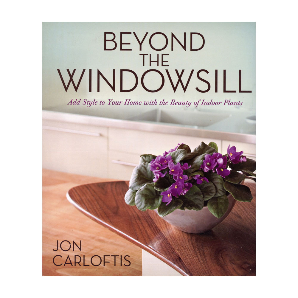 Beyond The Windowsill